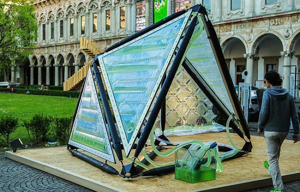 EXPO 2015 Algae Canopy soluzioni per l'inquinamento