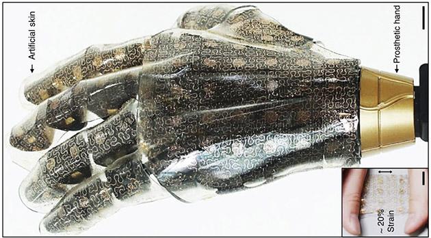 Allo studio un tessuto sintetico che emula la pelle umana