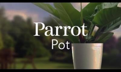 Da Flower Power a Pot e H2O: le novità di Parrot al CES2015