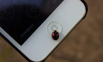 Un MMS mette a rischio la sicurezza di un miliardo di Android