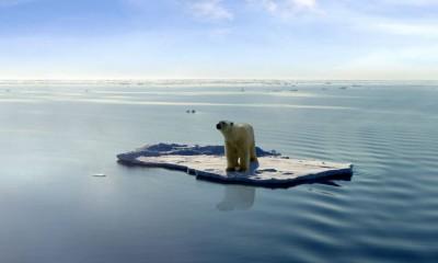 Allarme NASA: nell'Artico non c'è mai stato così poco ghiaccio