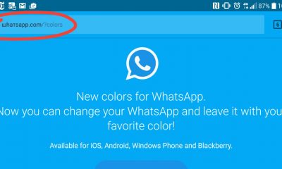 WhatsApp: la nuova truffa degli stati colorati, come difendersi