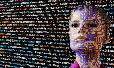 Software gestione presenze: l'utilità dei dati certi